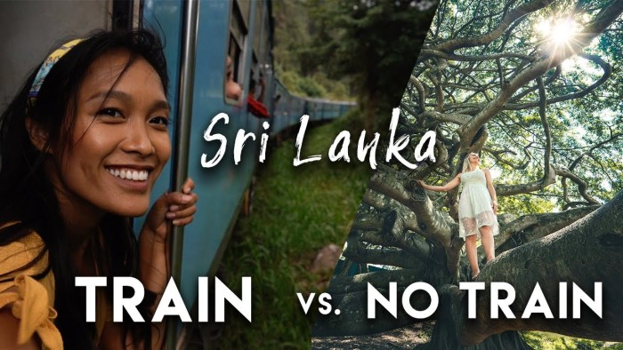 SRI LANKA TRAVEL REVIEW 🇱🇰 Ep 3: Kandy to Nuwara Eliya