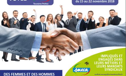 Elections professionnelles 2018 : Pourquoi voter SNECA ?
