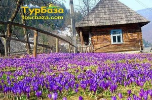 Квіткові тури зі Львова