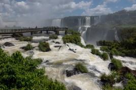 2018-11-20 - Iguaçu-21
