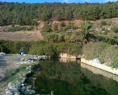 Nahal Tzipori Pool