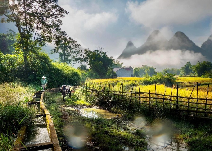 Trekking in ha giang 1024x683 15 Best things to do and see in Ha Giang