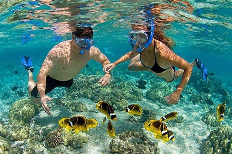 Cham island diving tour Hoi an 038 Hue Day Tours