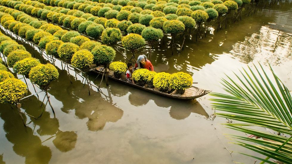 Mekong delta experience Day Trips from HCM