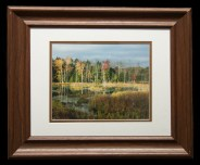 Framed and Matted-8895