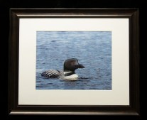 Framed and Matted-8906