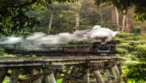 tourism guide australia puffing Billy