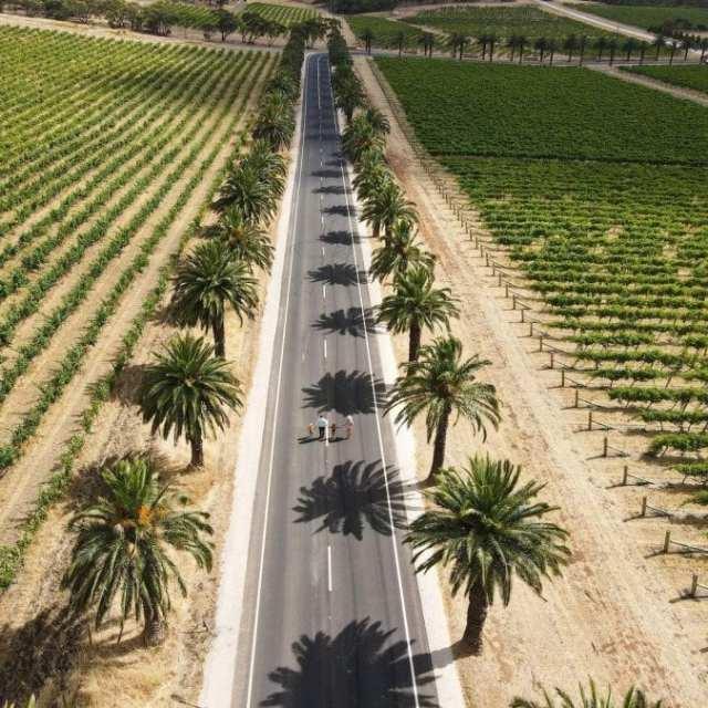 tourism-guide-Australia-barossa-valley-wine-region