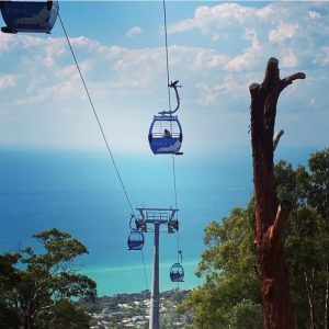 tourism-guide-Australia-arthurs-seat-eagle