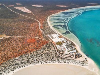 tourism-guide-australia-shark-bay