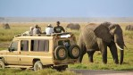Kilimanjaro Safari Holidays Co.Ltd