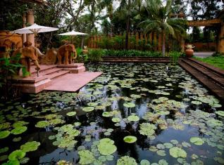Hi_AHH_43249351_AHH_Lobby_pond_view