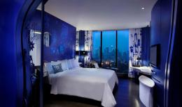 SO Sofitel Bangkok - Earth Room