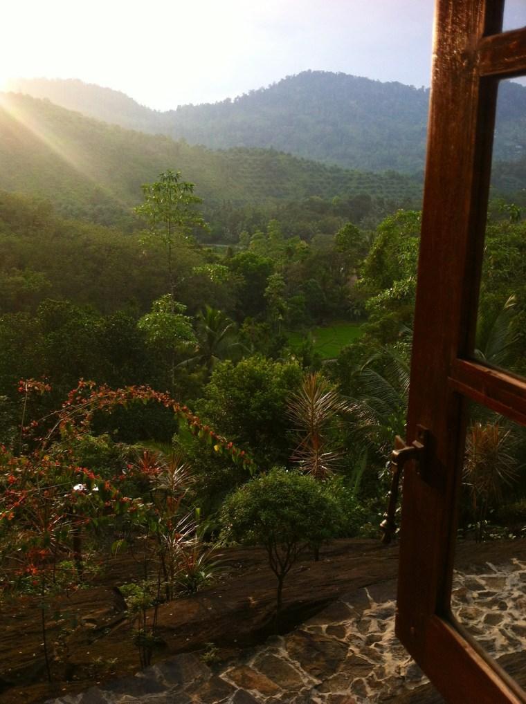 Blick_aus_dem Fenster_Singharaja_Garden_Eco_Lodge.JPG