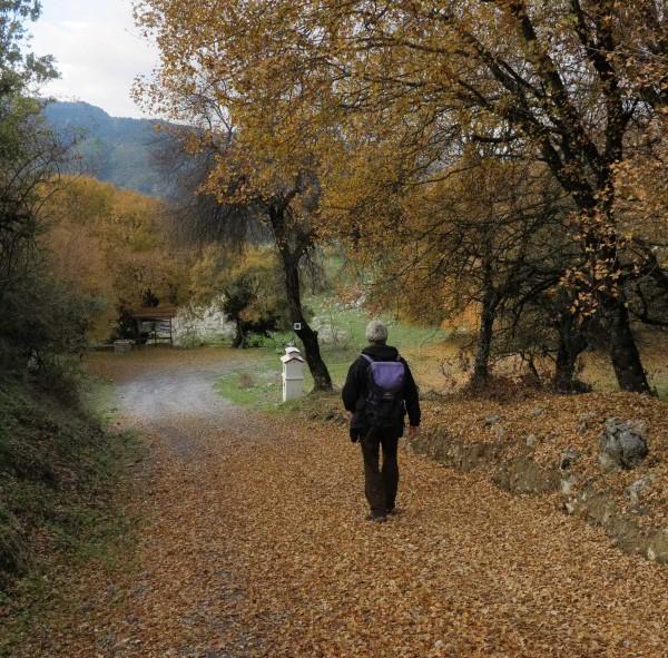 Menalon Trail-arxi_prasinou_monopat