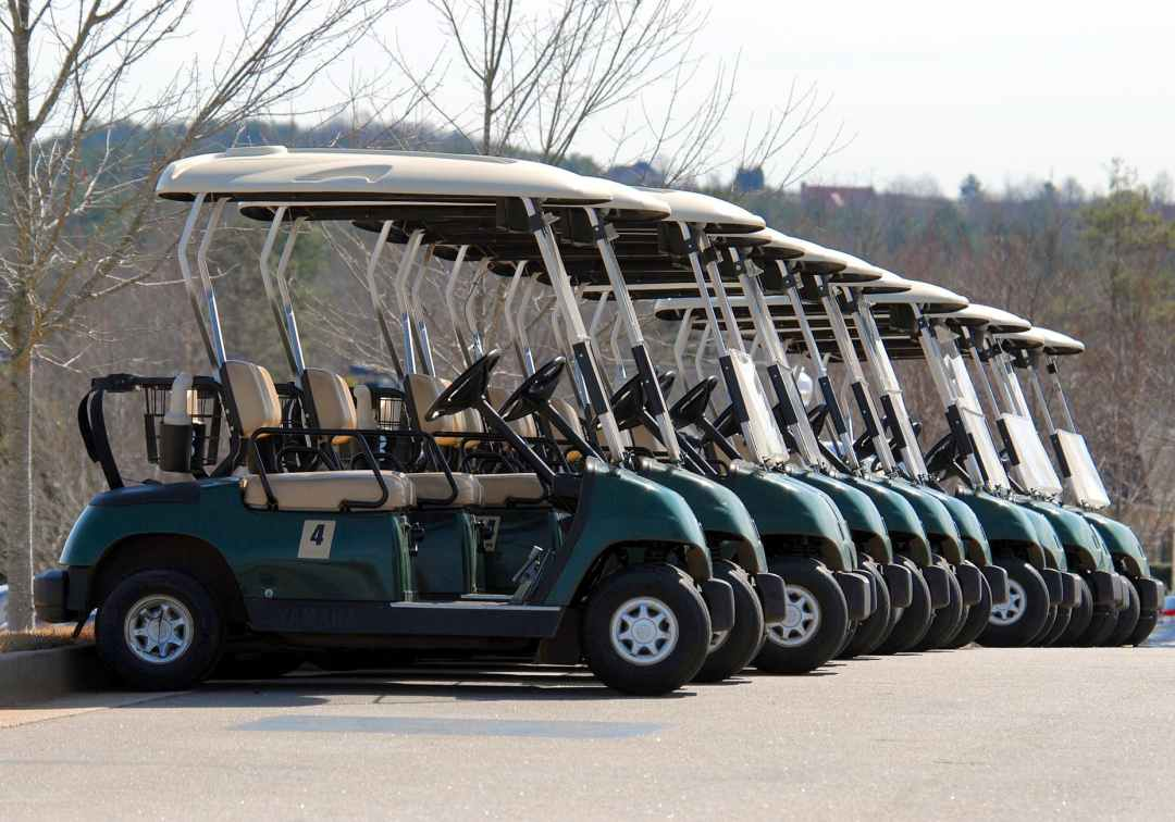 bag bus car cart jobs in travel and tourism