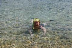 v-ann-snorkel
