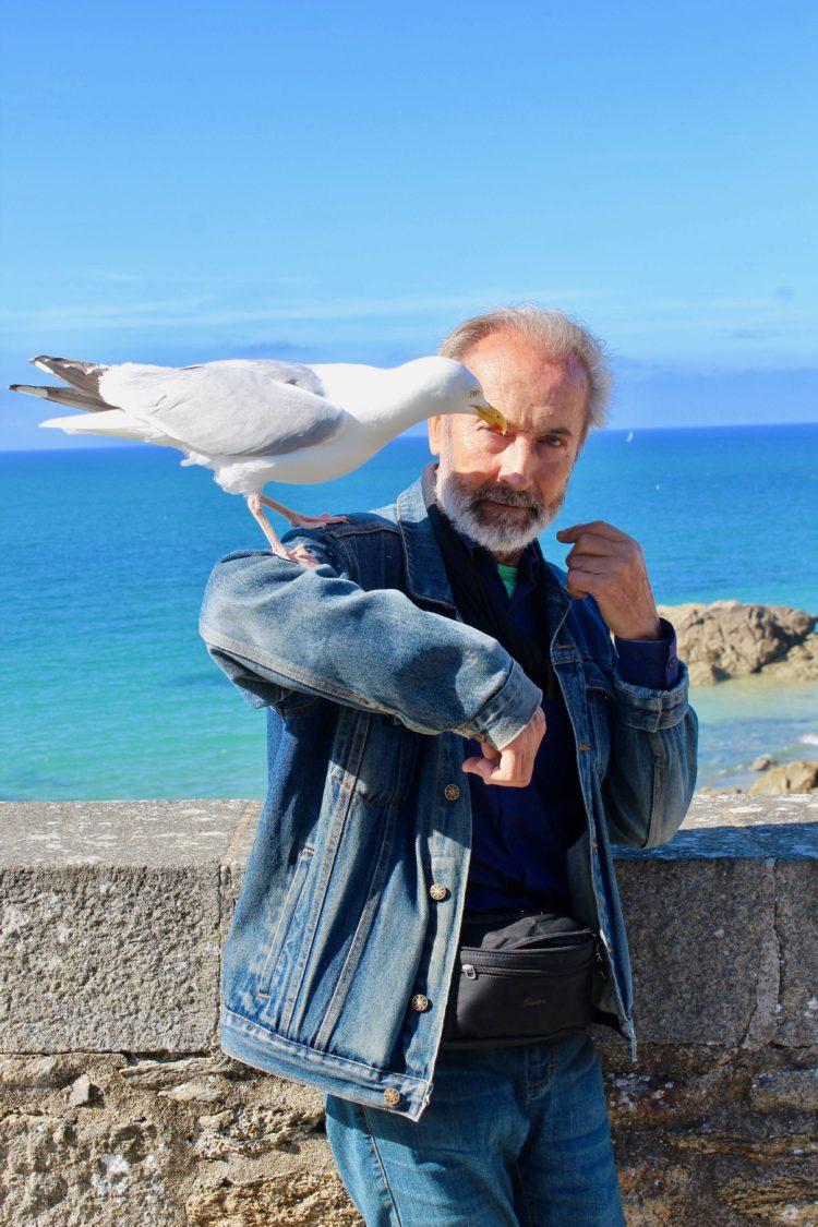 Un homme nourrit une mouette à Saint-Malo