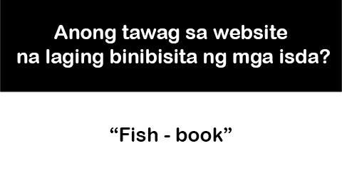 11 fishbook