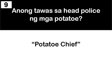 9 potatoe chief