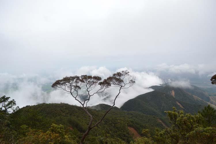 Mount Kemalugong