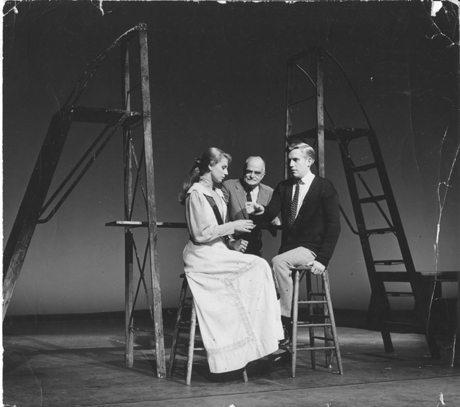 Festival de teatro de Williamstown