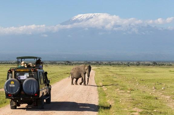 Image by http://www.wild-eye.co.ke/