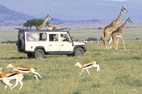image; Soft Kenya