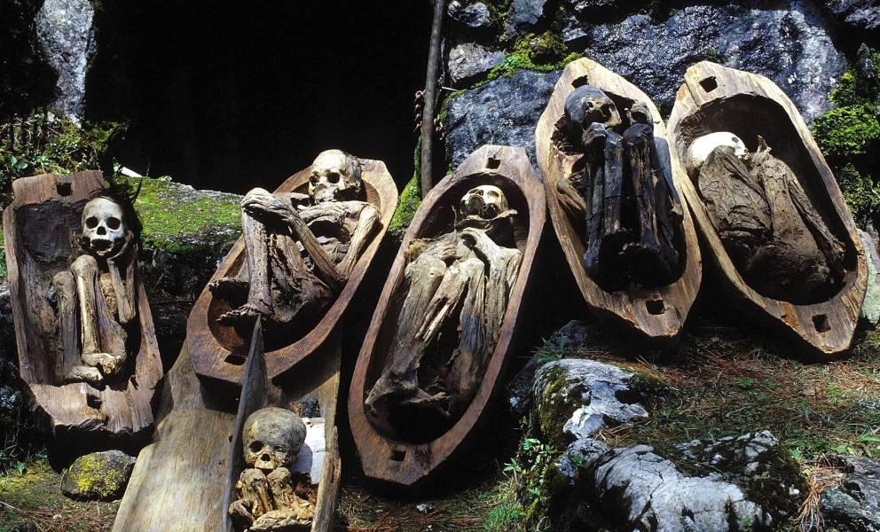 мумии в гробиках