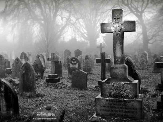 кресты кладбища сталл