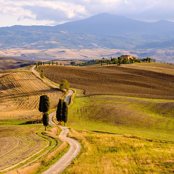 Country road with cypress trees, Tuscany
