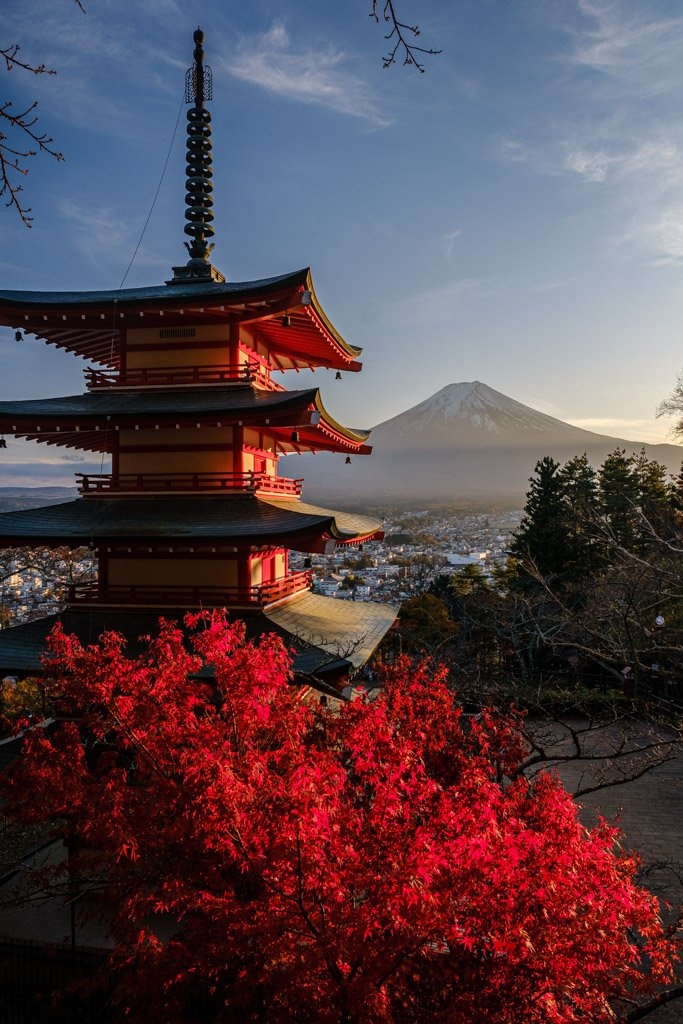 Chureito Pagoda, Mt. Fuji  and red maple tree