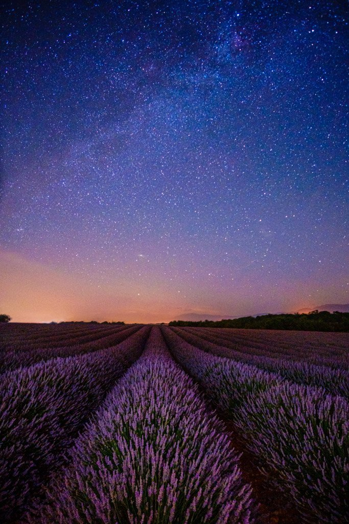 Lavender fields at night, Valensole, France