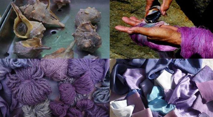 Murex Purple Production