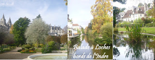 visite touraine loches tours amboise chateau loire blois chaumont chedigny azay beauval