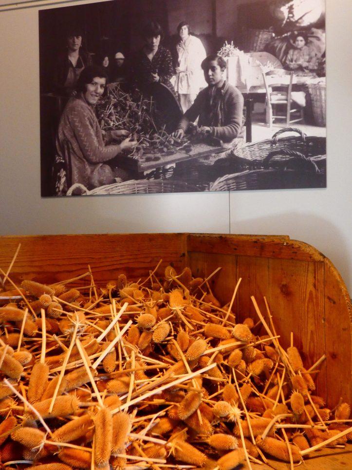 Visiter Saint Rémy de Provence musée chardon