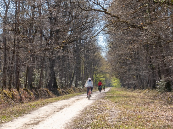 foret loches vélo