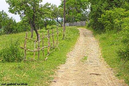 Romanian Villages Plesesti by Gabriel