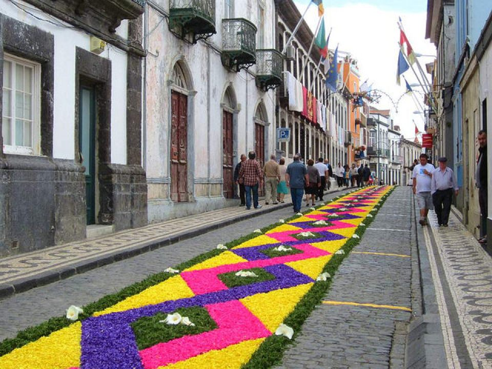 flowers on the road ponta delgada sao miguel