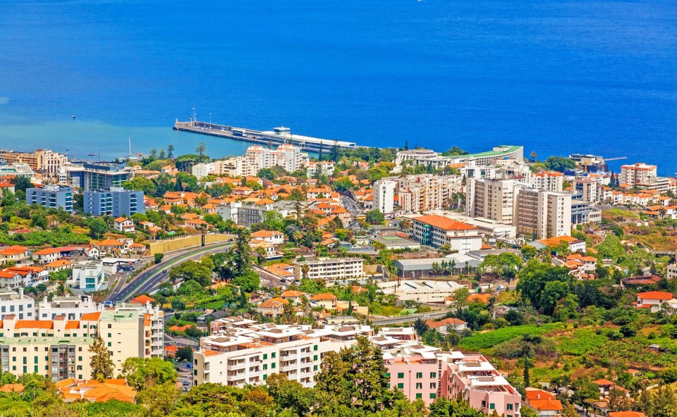 Funchal, Madeira portuguese island trees
