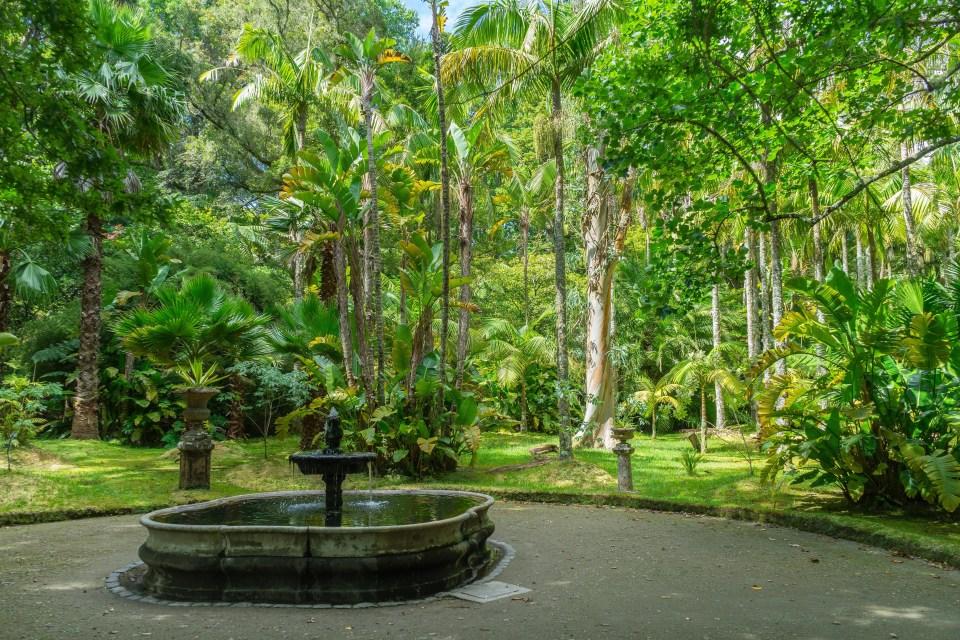 Quinta in Sao Miguel Azores Furnas Flower Garden