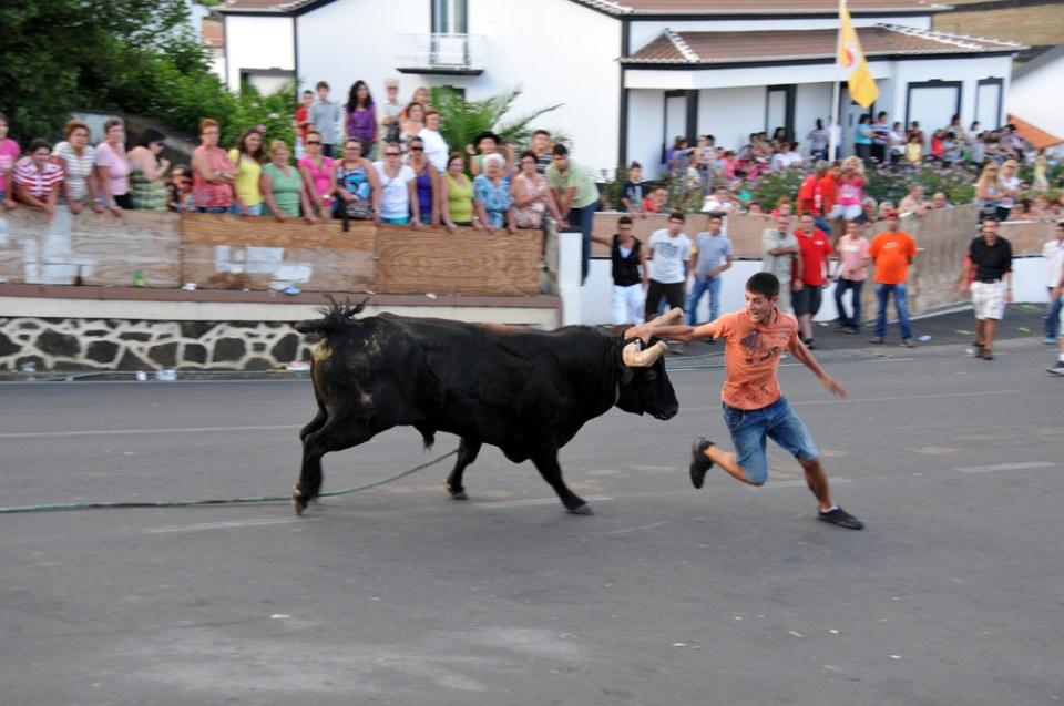 Tourada a corda Terceira Bull Festival Azores