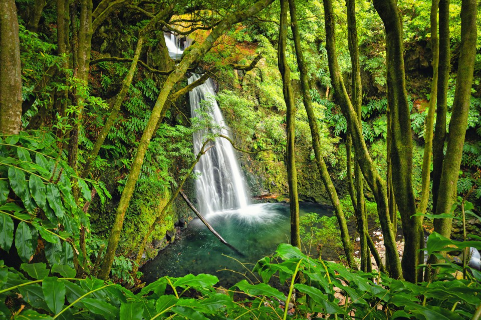 azores waterfalls nature on sao miguel island lagoa