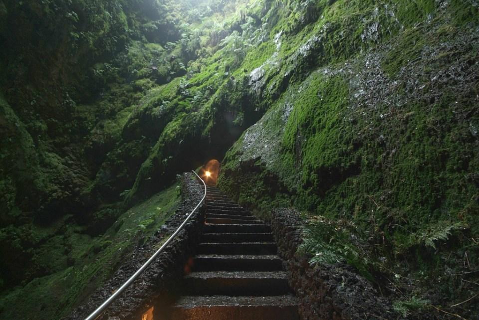 Cave in the Azores entrance Algar do Carvão Terceira