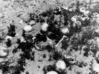 Treblinka after the war