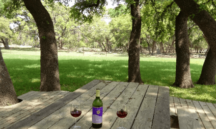 The Girls' Guide to Wimberley