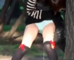 【お漏らし隠盗動画】ビールで泥酔した女性が公園でパンツも脱がずに立ったままオシッコを漏らした決定的瞬間ww