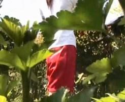 【JK着替え盗撮動画】木陰に隠れて制服から体操服ジャージに着替える女子校生を隠し撮りww