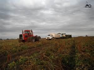 tracteur Massey Ferguson 4880