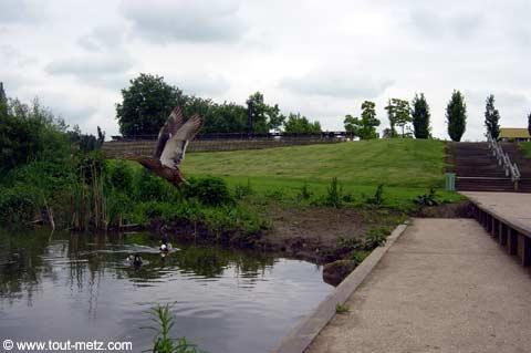 Parc de la Seille à Metz cote riviere 10